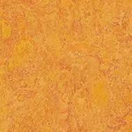 322635 marigold
