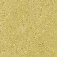 325935 mustard