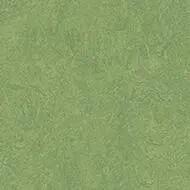 326035 leaf