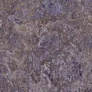 342235 lavender field