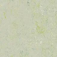343035 salsa verde