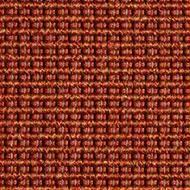 361600 Coral Rose