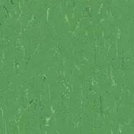 364735 nettle green
