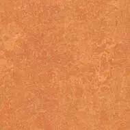 382535 African desert