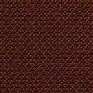 396480 Apricot Orange
