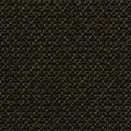 396740 Avocado