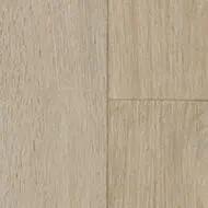 718802 elegant oak