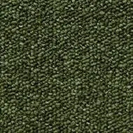 T393750 Shale Green